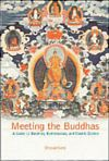 Book cover of Meeting the Buddhas